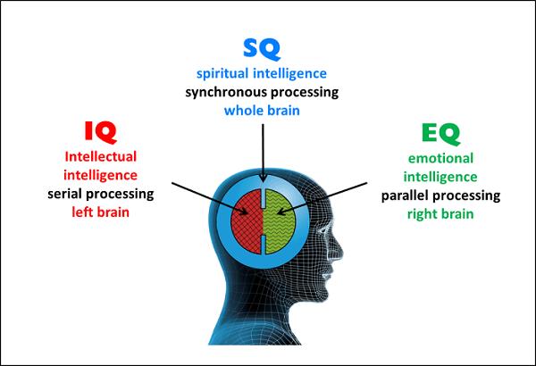 các nhà khoa học đã nghiên cứu và cho rằng những người có chỉ IQ thường rất khỏe khoắn