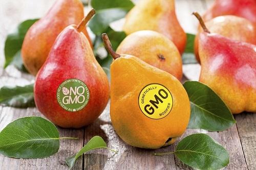 Ăn thực phẩm biến đổi gen có sao không?